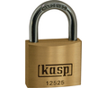 Buy Padlock brass 25 mm